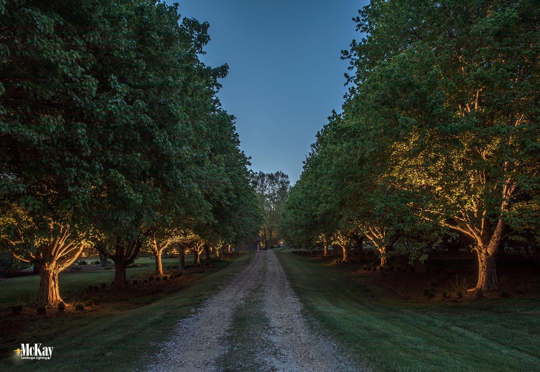 Driveway Lighting Ashland Nebraska McKay Landscape Lighting DS 01-2
