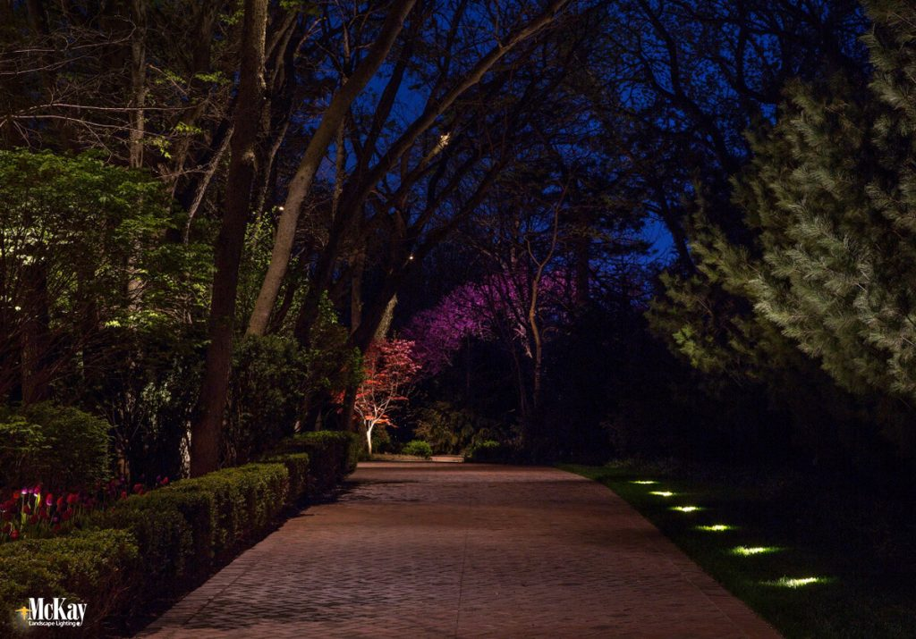 Why Hire a Landscape Lighting Professional