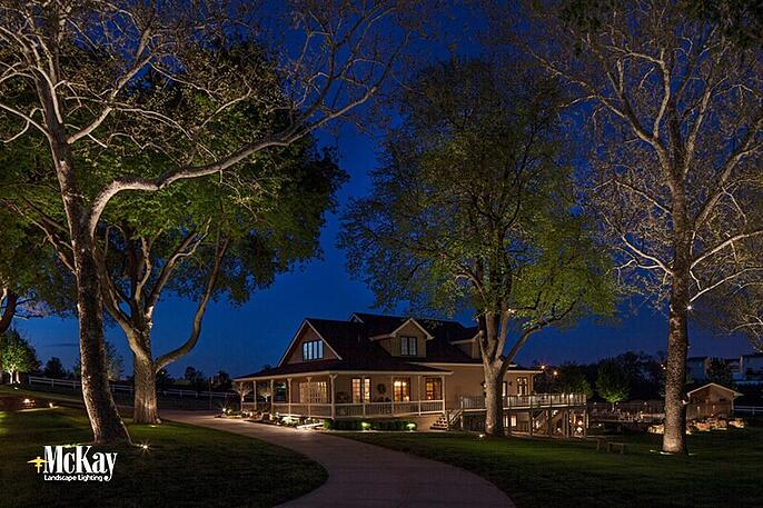 Landscape lighitng trees adds curb appeal and expands the premises of your property