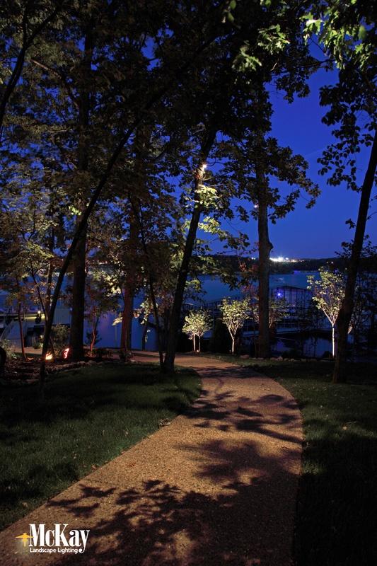 Lighting Trees in the Yard Omaha Nebraska