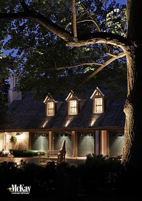 Draw Attention to Unique Features with Landscape Lighting