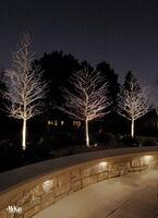 Seat-Wall-Lighting-Omaha-NE-McKay-Landscape-Lighting-10_1