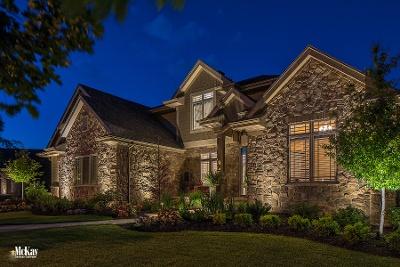 Residential Outdoor Lighting Omaha Nebraska McKay Landscape Lighting MH 03-1