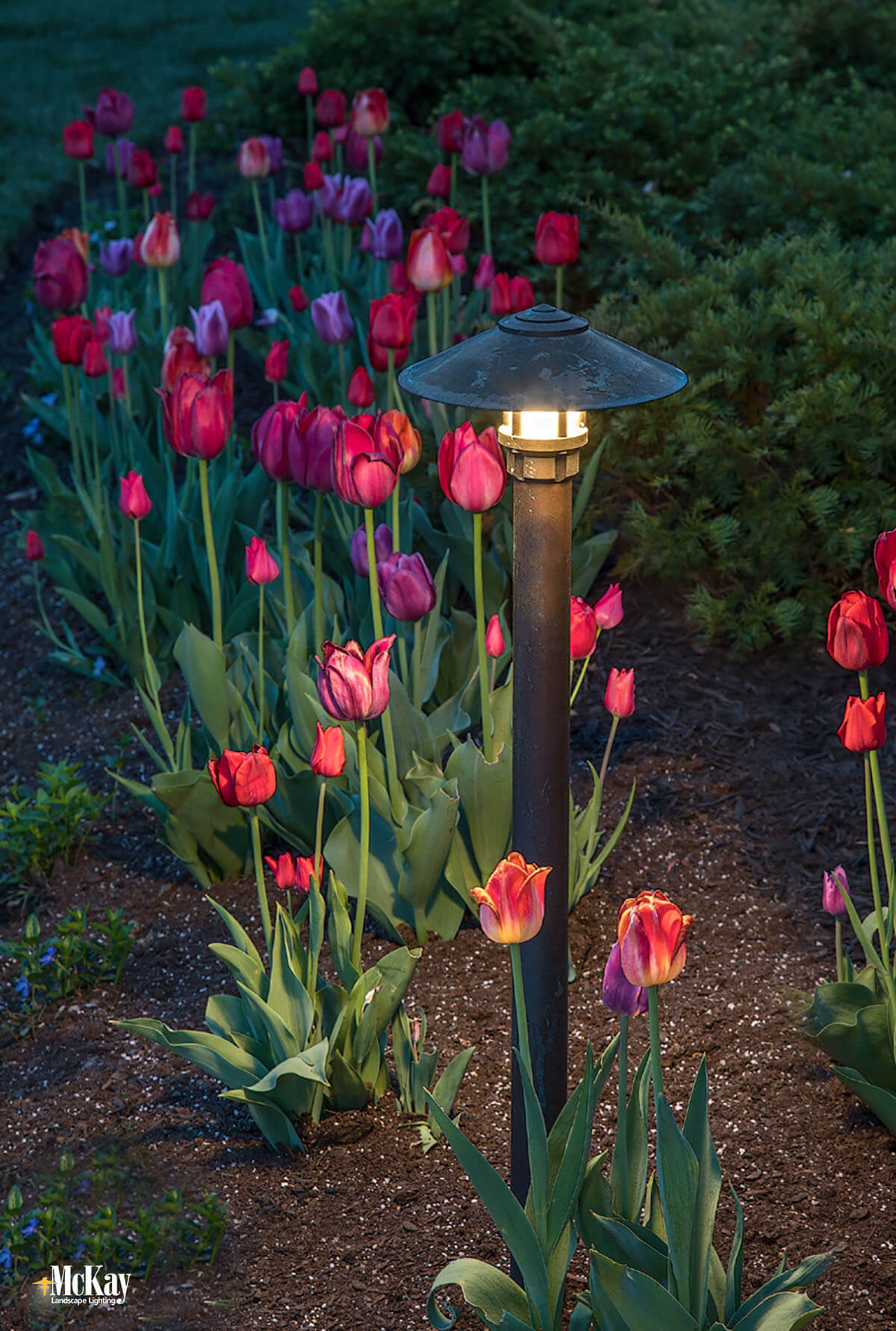 This smaller bollard light works very well at larger front entrances, paths, and driveways. Click to read more... | McKay Landscape Lighting - Omaha, Nebraska