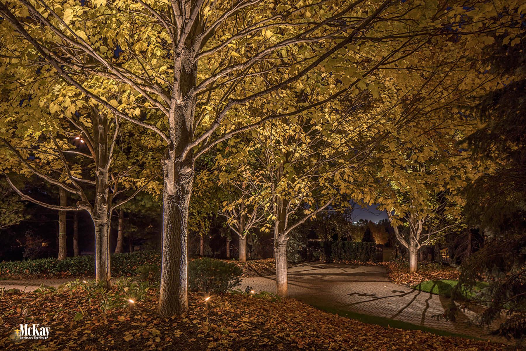 See more photos of the outdoor lighting design at this elegant estate in Omaha, Nebraska | McKay Landscape Lighting