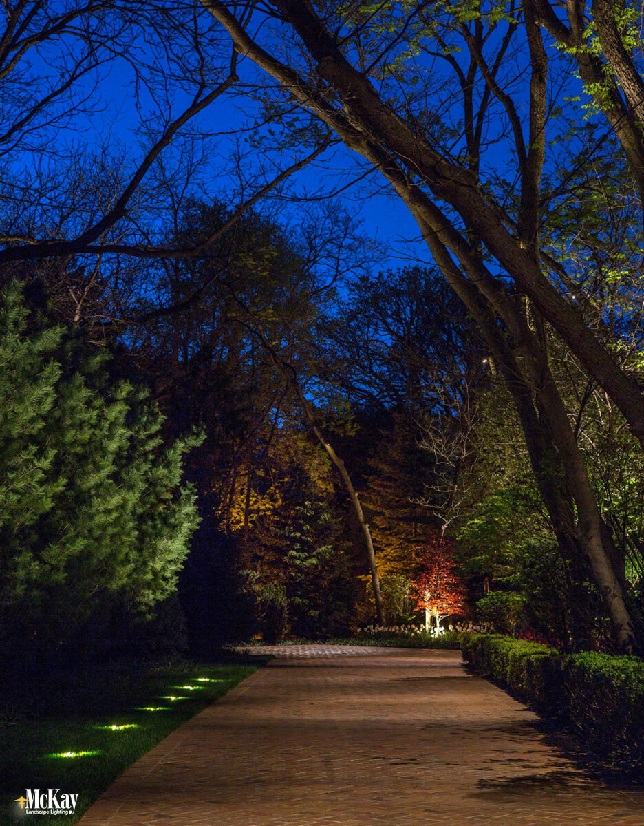 Driveway Lighting Idea - Here the well lights illuminate the evergreens and act as a guide while the downlights in the trees ensure an evenly lit driveway. Click to learn more...   McKay Landscape Lighting - Omaha, Nebraska