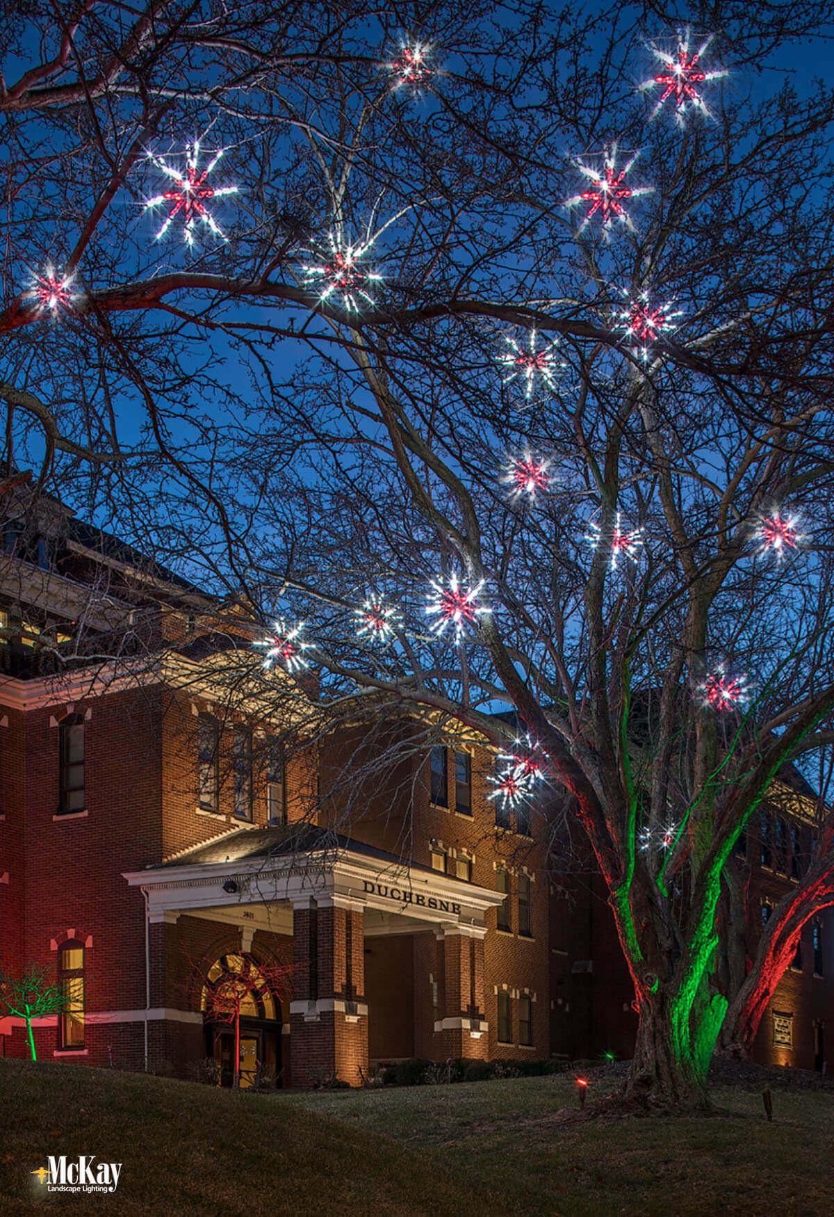 Commercial Christmas and Holiday Lighting Omaha Nebraska McKay Landscape Lighting