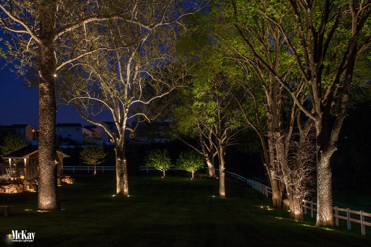 Lighting the trees on your property adds more ambient light into the yard at night. Not only will you love looking out into your yard, but a well-lit yard makes it more difficult for someone to access your home unseen. Click to learn more...   McKay Landscape Lighting - Omaha, Nebraska