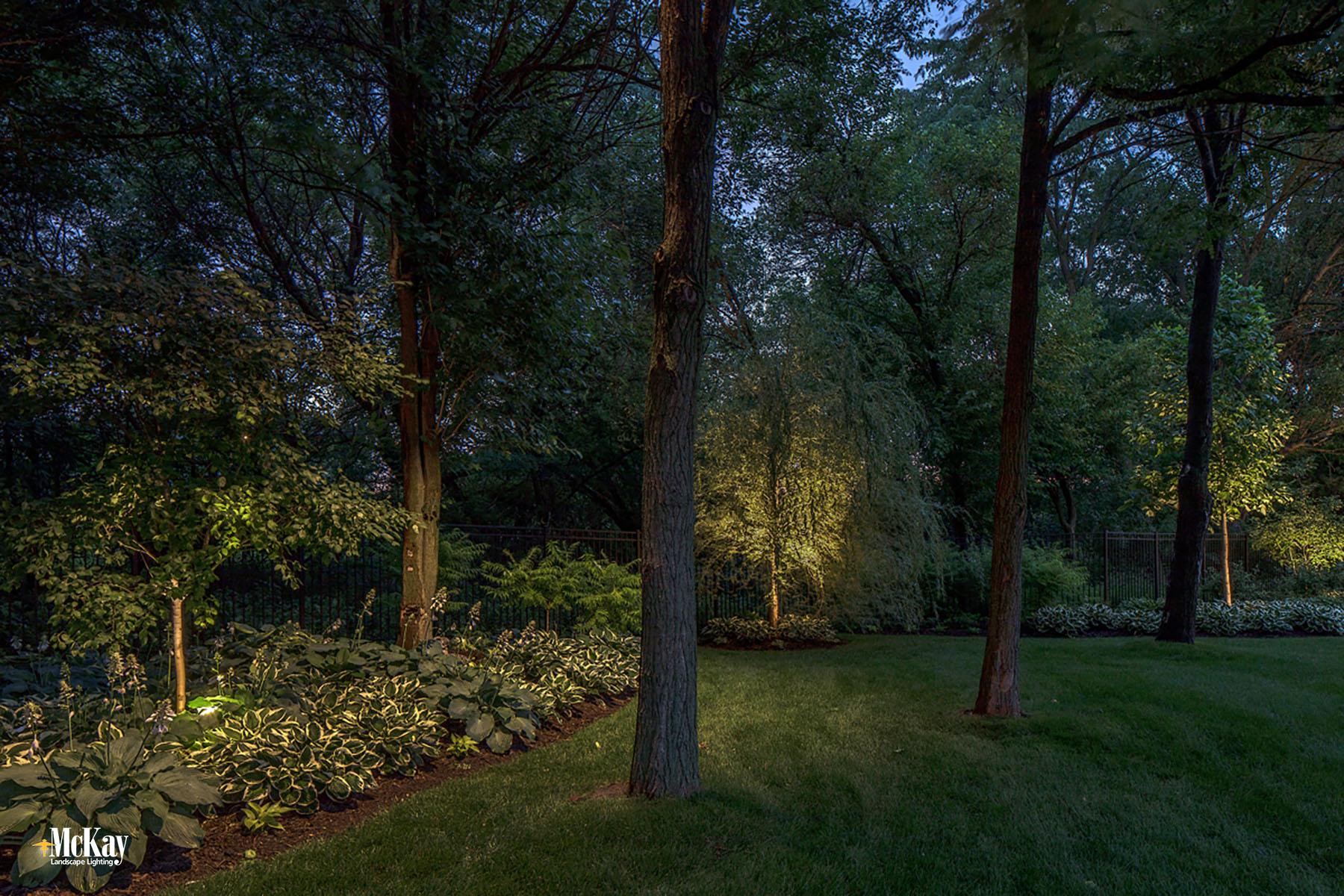 Landscape Lighting Design: Yard & Tree Lighting Elkhorn Nebraska | McKay Landscape Lighting